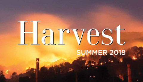 Harvest Newsletter Summer 2018 cover image with wildfires in background