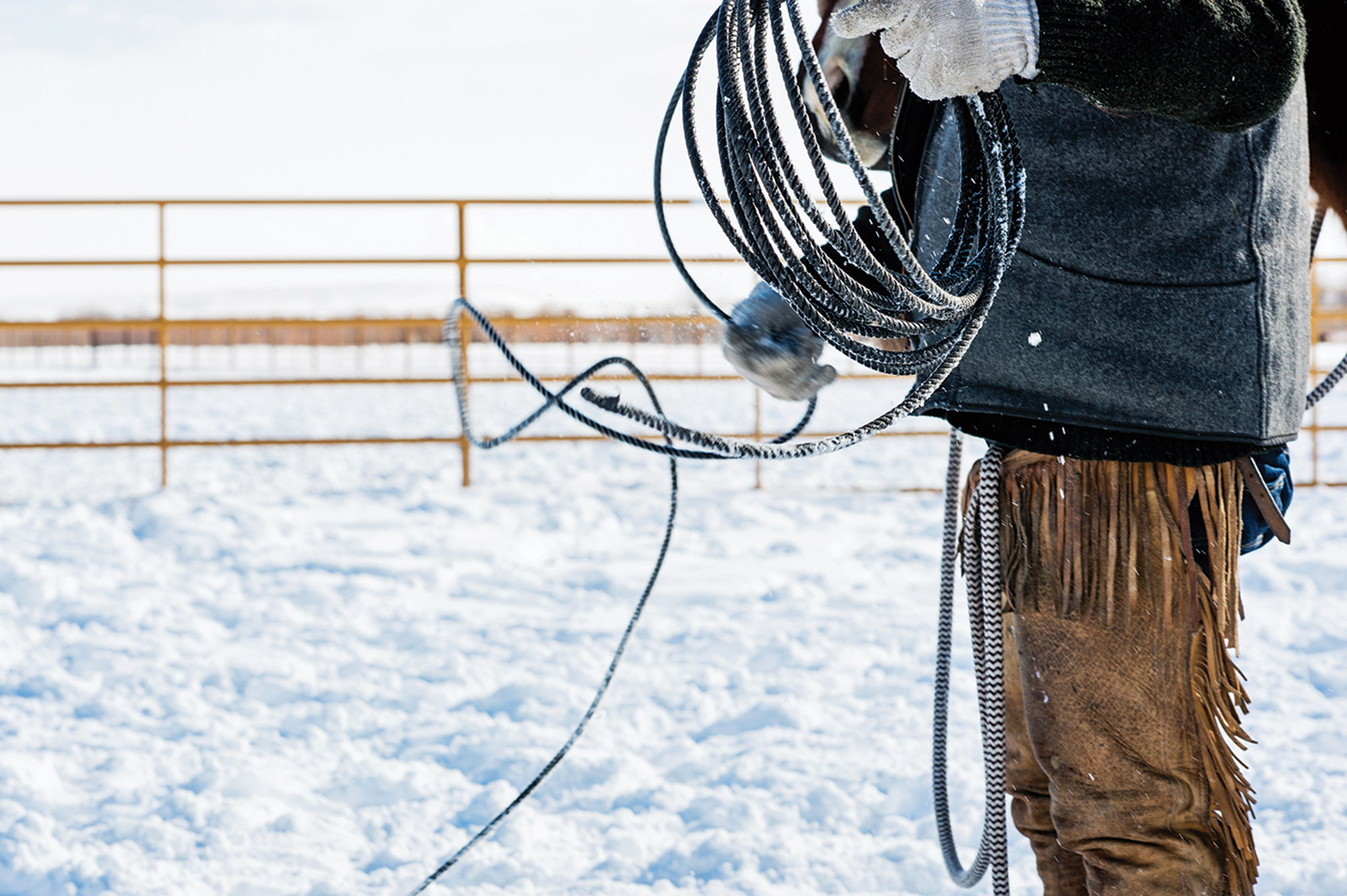 Person holding a lasso next to a horse in a snowy enclosure