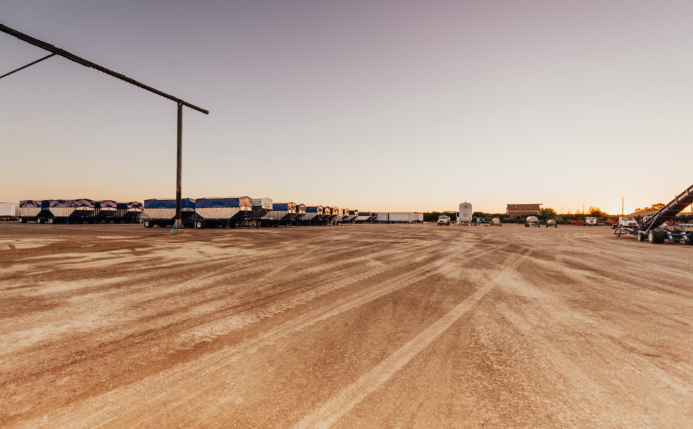 Wide shot of almond processing facility