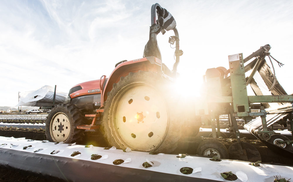 Farm equipment and a lens flare