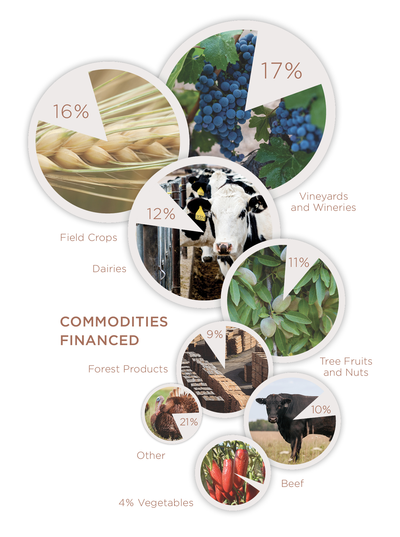 Commodities Financed. Vineyards & Wineries: 17%, Field Crops: 16%, Dairies: 12%, Tree Fruits & Nuts: 11%, Forest Products: 9%, Beef: 10%, Other: 21%, Vegetables: 4%