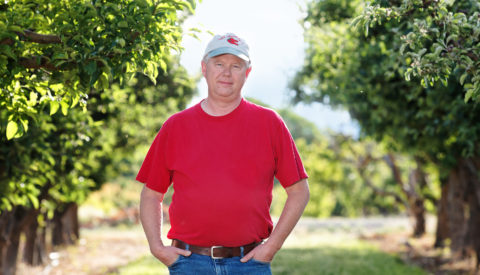 Tom Walcher, farmer, in orchard
