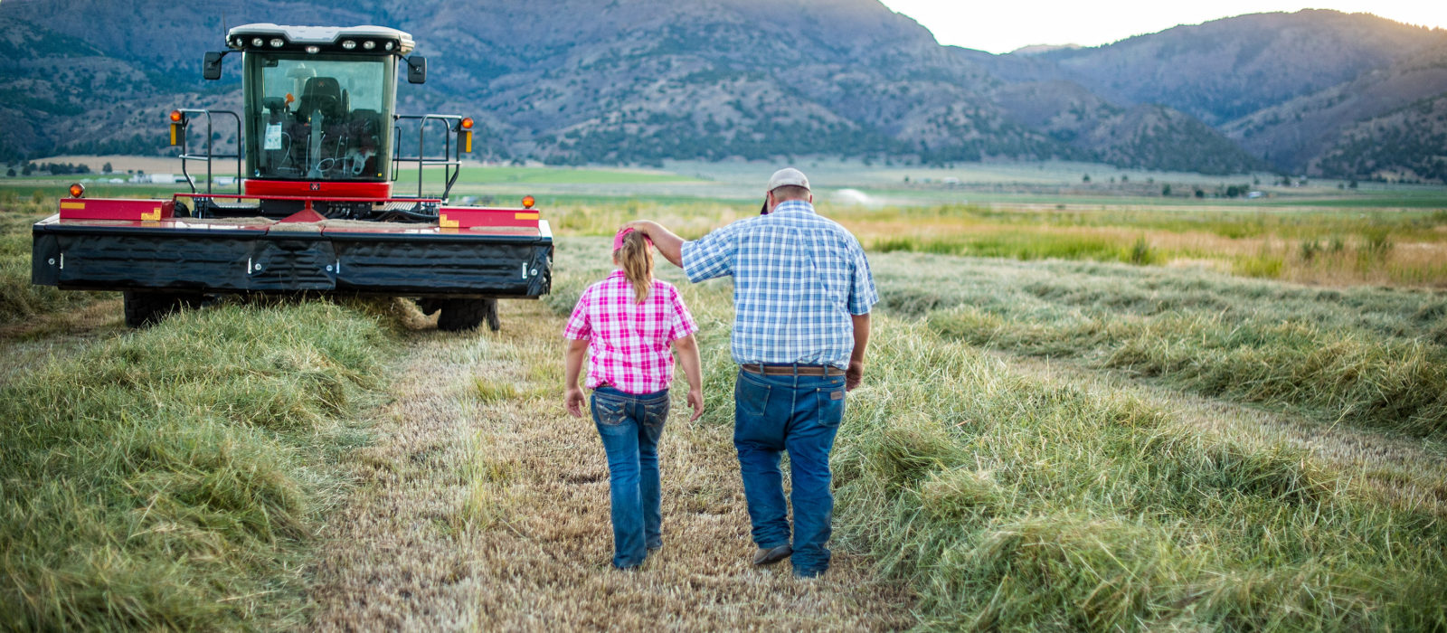 farmer and his daughter walking through an alfalfa field with tractor