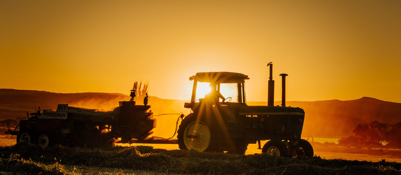harvesting equipment in alfalfa field at sunset