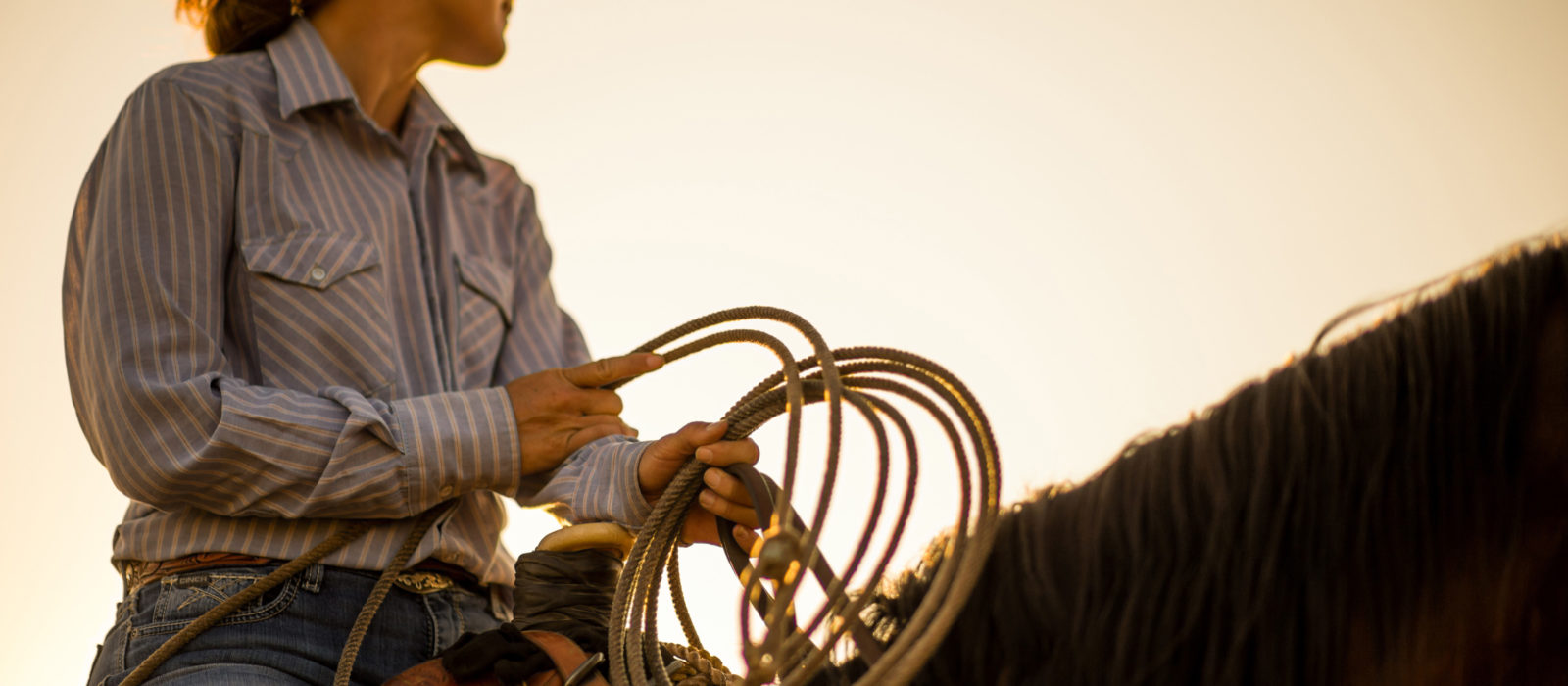 Female cattle rancher on horseback with lasso