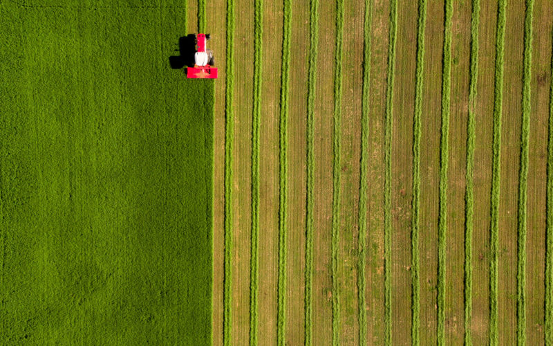 Overhead view of red tractor harvesting alfalfa field