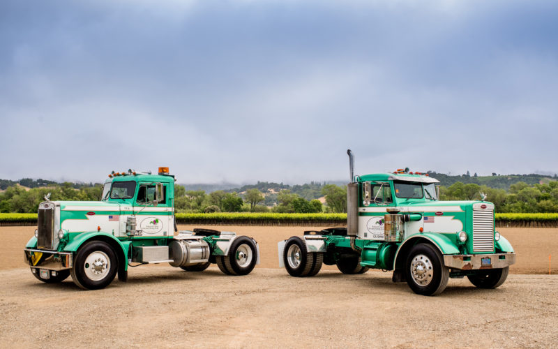 two big rig trucks in front of vineyards