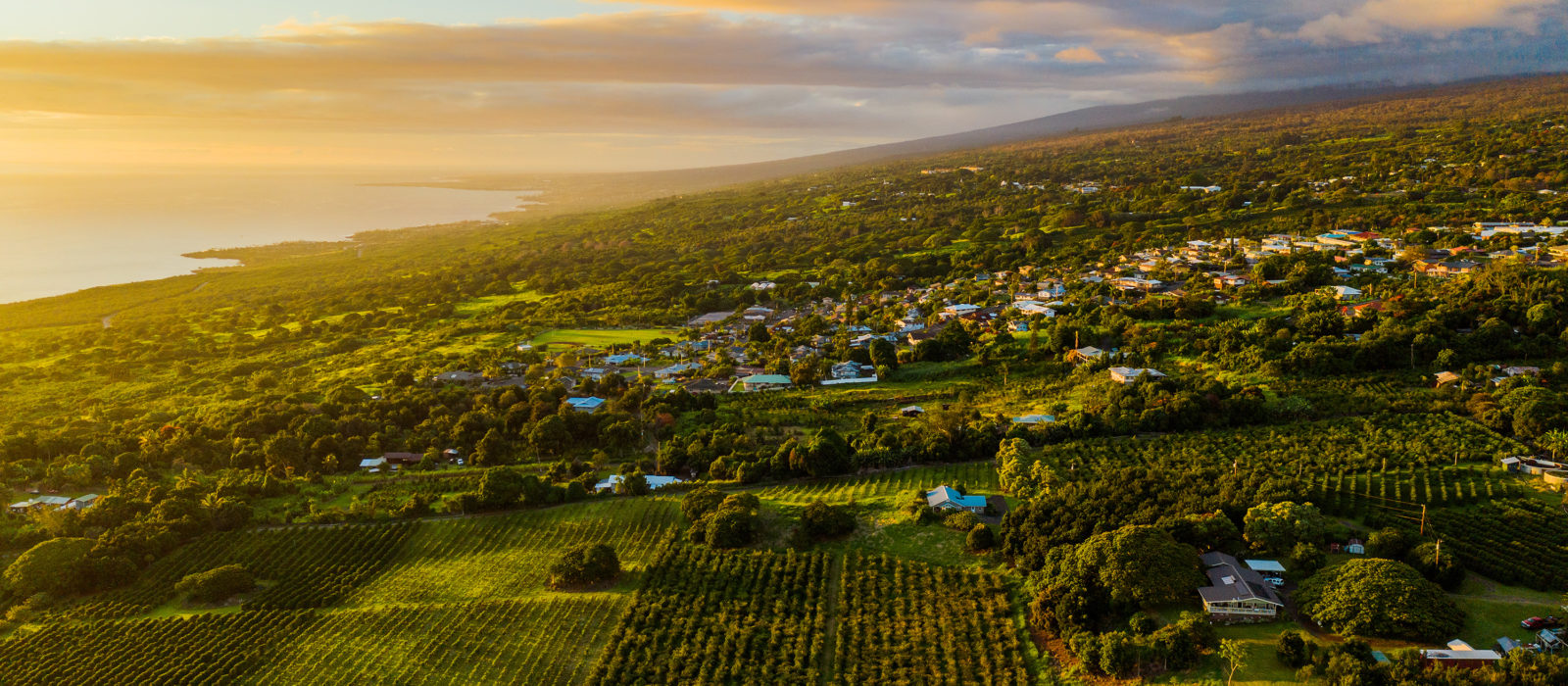 overview of Hawaii farmland with houses and the ocean