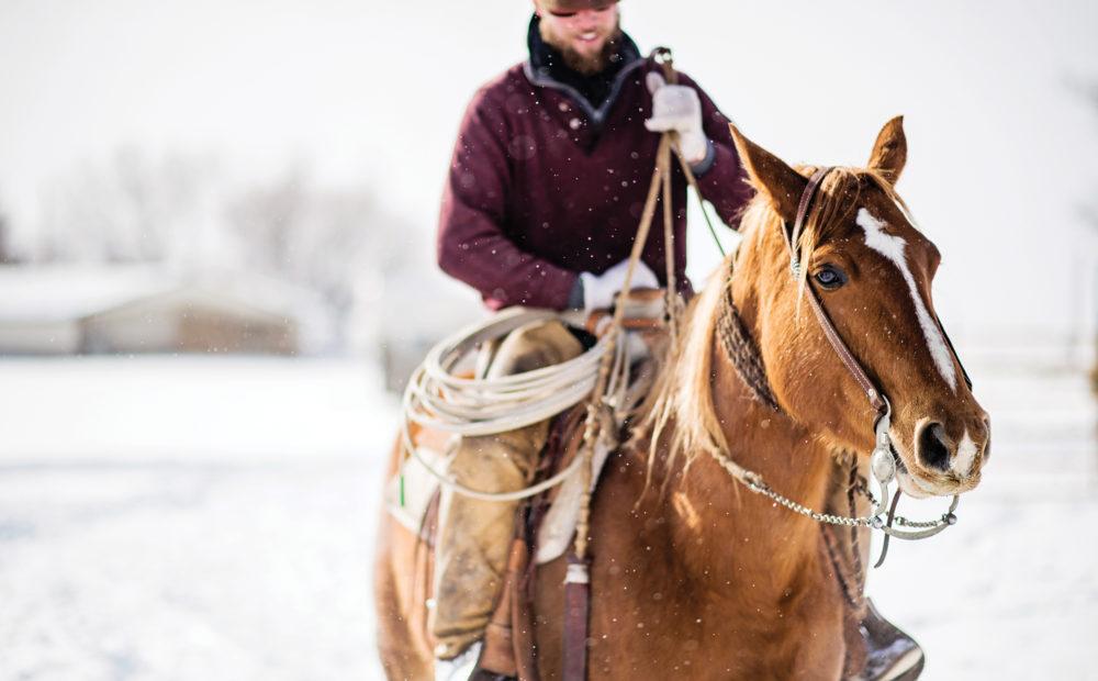 rancher on horseback in the snow