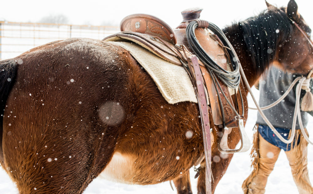 horse in snow with saddle being led by rancher