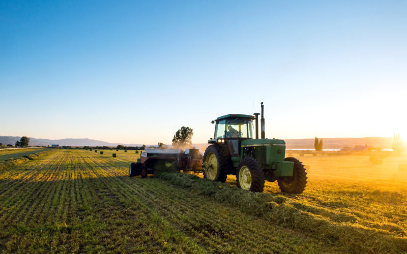 Farm equipment in alfalfa field at dusk