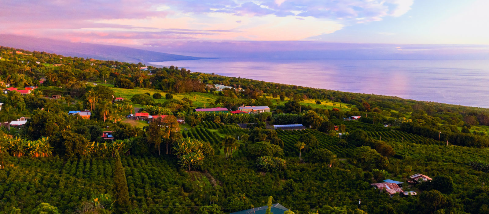 Greenwell Farms, Kona, Hawaii